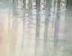 2013年3月13日(水)~3月18日(月) 吉田未来・穴澤和紗二人展「calm」