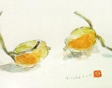 11月27日(水)〜12月2日(月) 海田 廣子 展「あるがままに・・・」