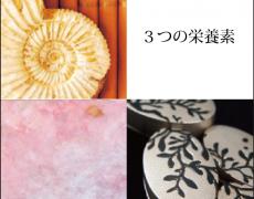 2014.8.20(水)-8.25(月) 3つの栄養素 乙津 沙也香・溝江碧美・宮崎ひさみ
