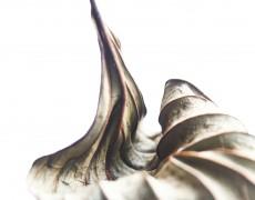 2014.10.15(水)-10.20(月) aki個展 Leaves [写真]