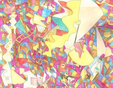 2015.6.3(水)-6.8(月) 髙橋麻佑 個展「double filter」