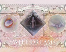 2017.3.15(水)〜3.20(月) 山田フユウ 個展 SWEET DREAMS