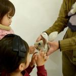 higashikage_展示風景子供と作品
