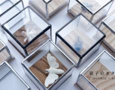 2019.9.22(日)〜9.29(日) 硝子のカタチ つのだ ゆき 個展